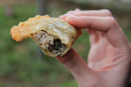 Vietnamese fried dumpling or pillow cake (banh goi in Vietnamese)